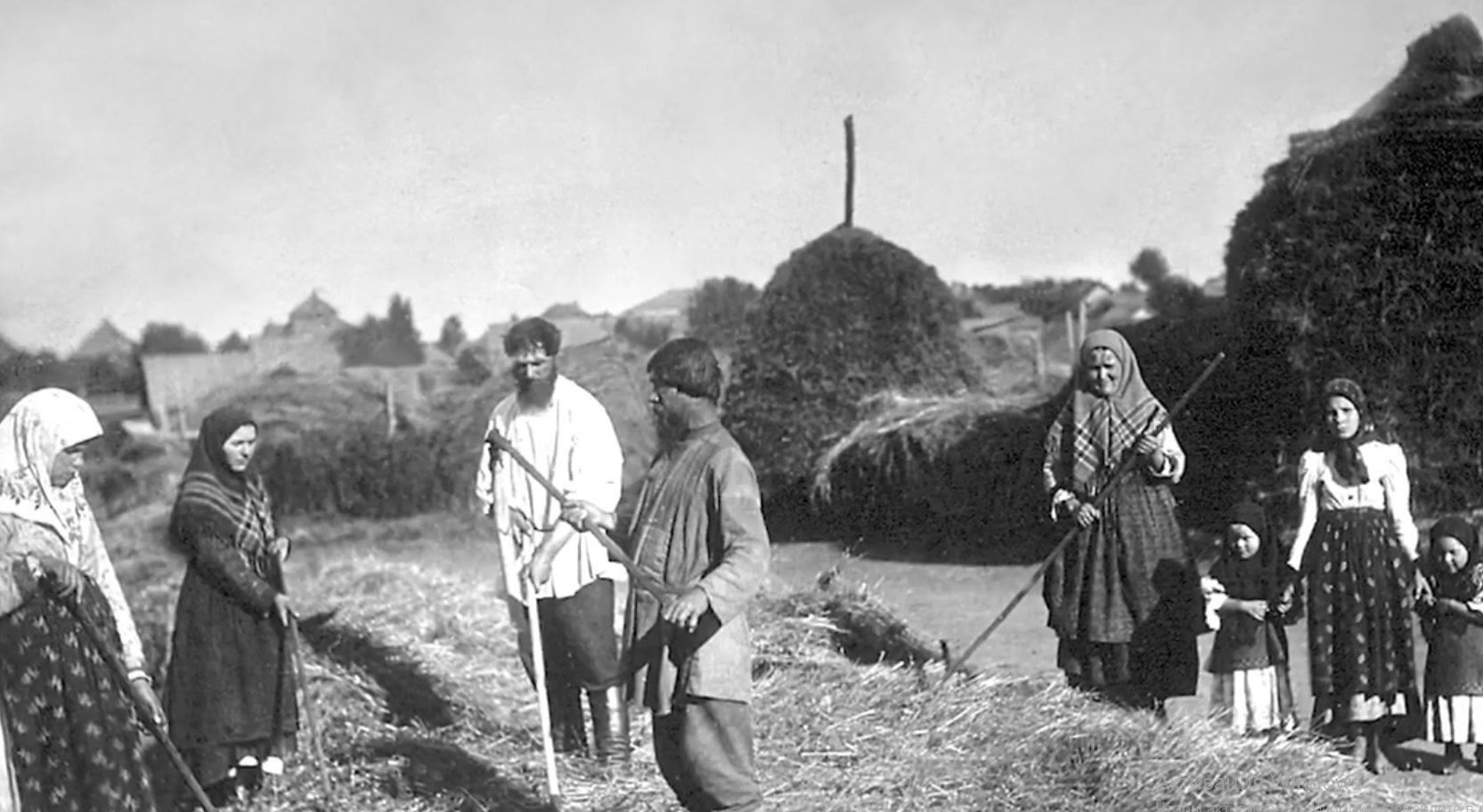 """Проект """"Первые"""": Рожь и лён - как тверские становились первыми в земледелии"""