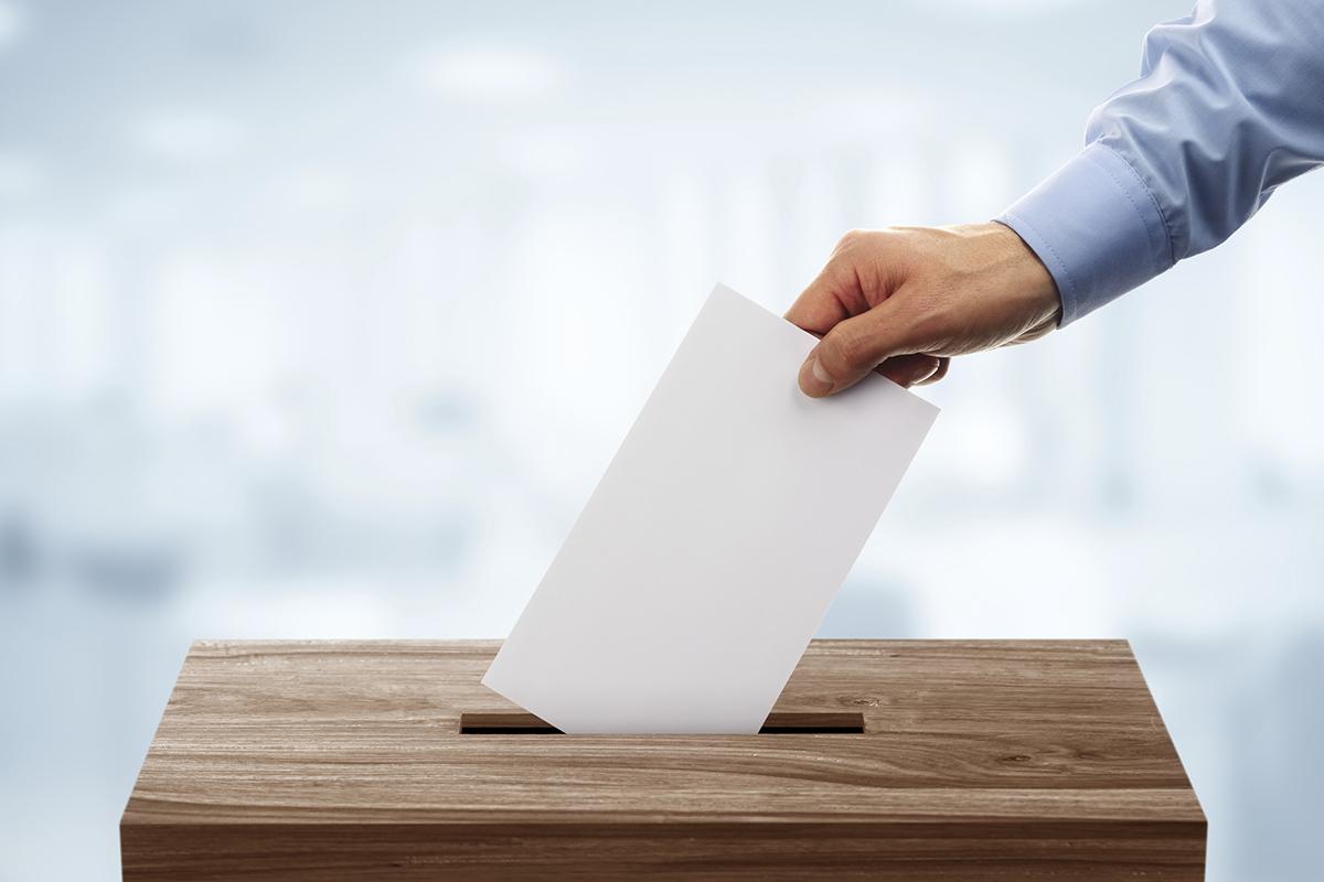 В Тверской области выберут более 260 депутатов различного уровня