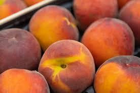 В гипермаркетах Твери продавали нектарины, апельсины и грейпфруты с опасными вредителями