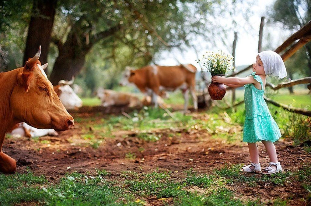 Победители конкурса «Лучшее семейное подворье» в Тверской области получат призы