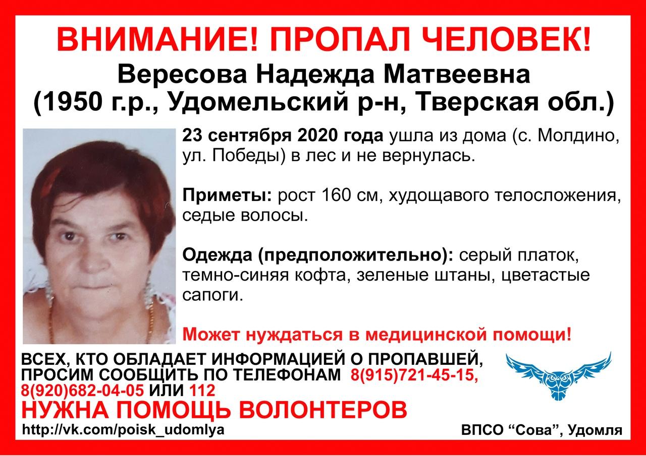 В лесах Удомельского района ищут 70-летнюю женщину