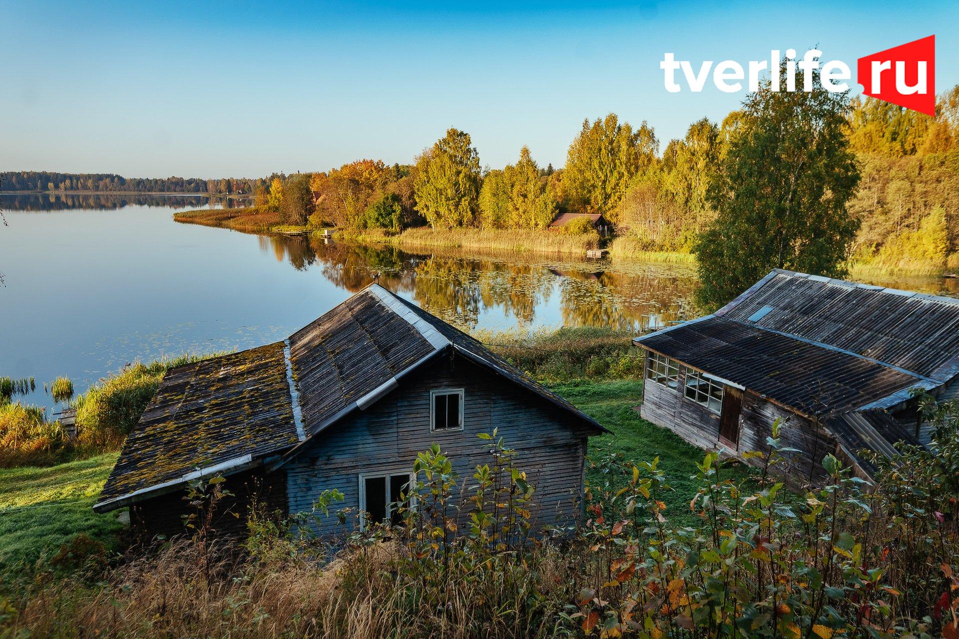 Золотая осень, золотая: разнообразие осенних красок Тверской области