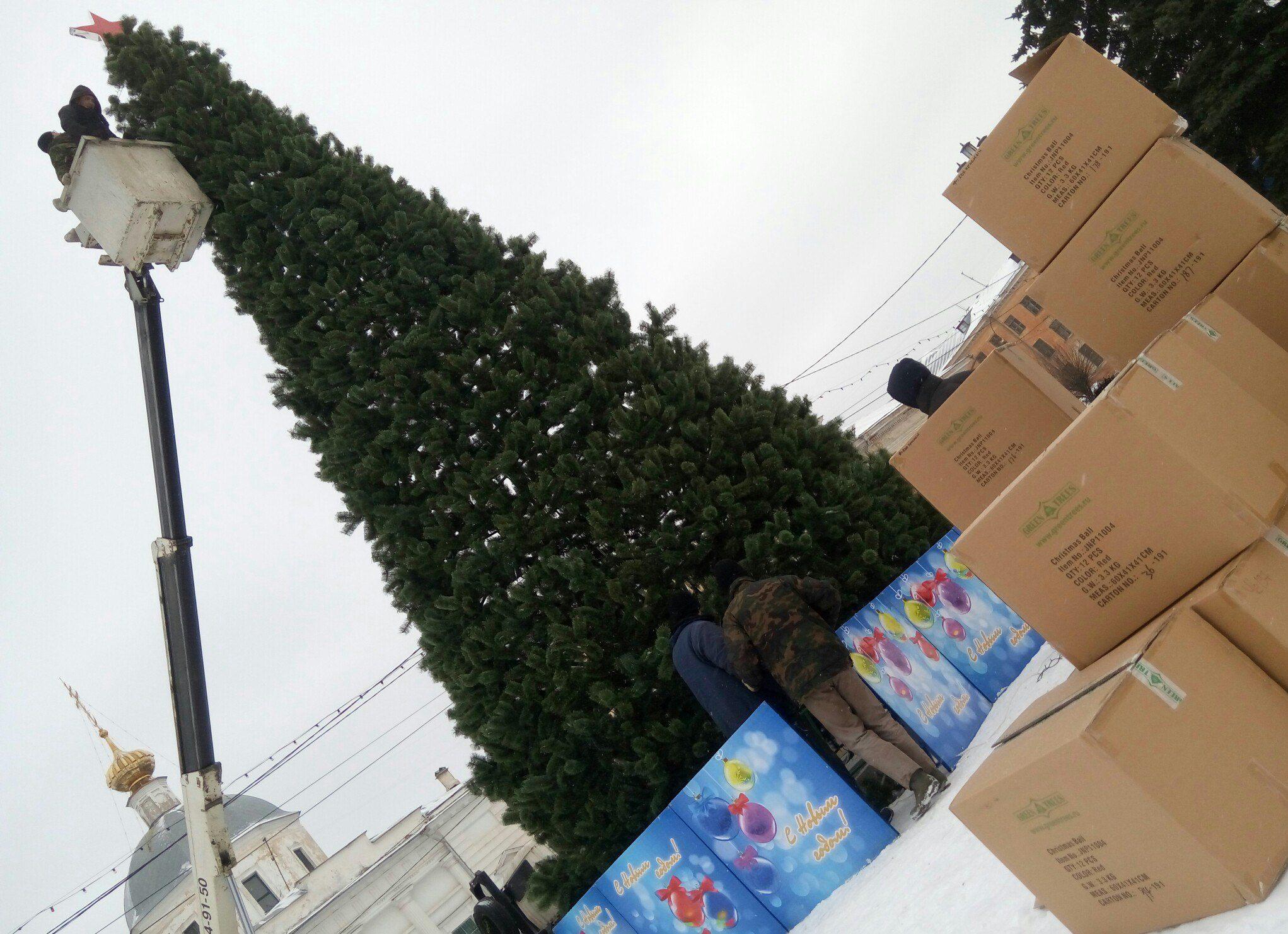 Новогодний контракт: в Твери ищут подрядчика на установку праздничных елей и Деда Мороза