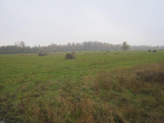 В Тверской области владельцев сельскохозяйственных угодий наказали за нарушения