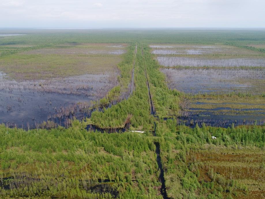 В Тверской области обводнено около 12 тысячи гектаров пожароопасных торфяников