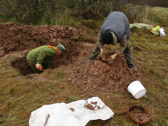 Андреапольские поисковики в окопах и воронках нашли останки солдат