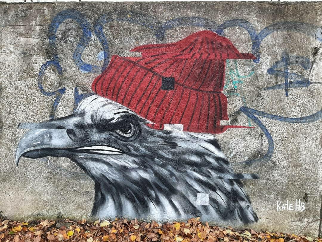В Твери бетонный забор украсило новое граффити