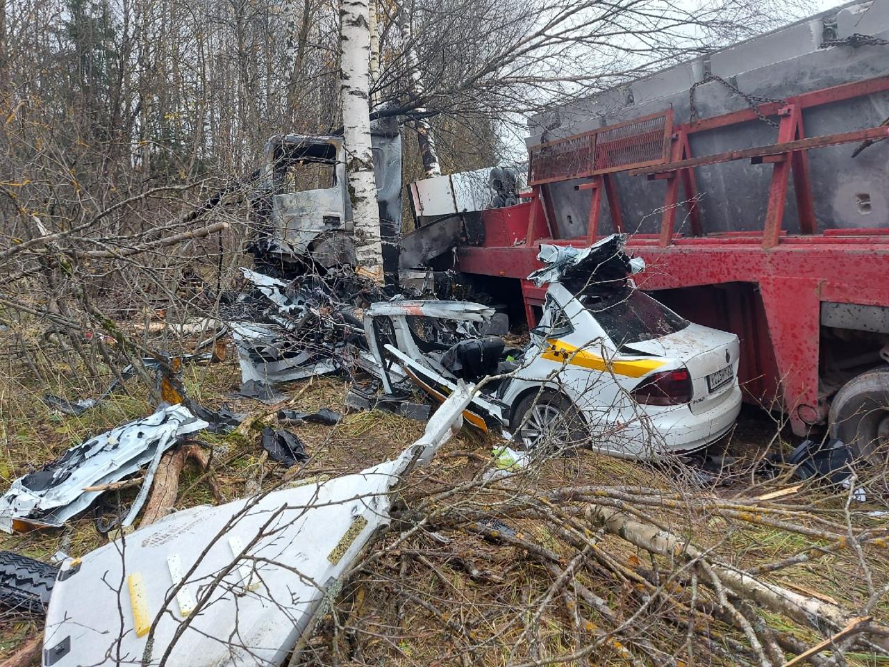 Из-за кабана на трассе М-9 в Тверской области разбился водитель легковушки