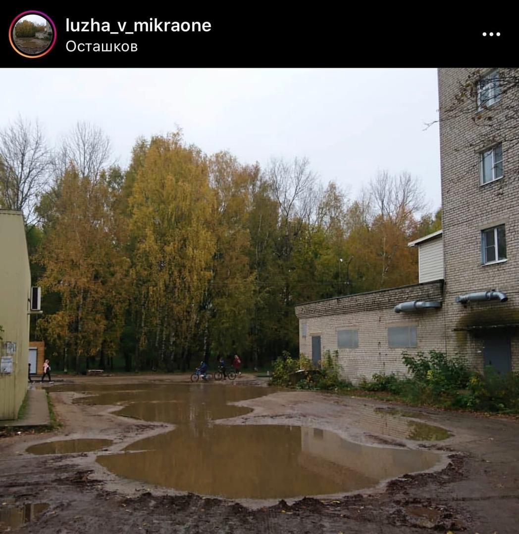 У лужи в Осташкове появился свой Instagram
