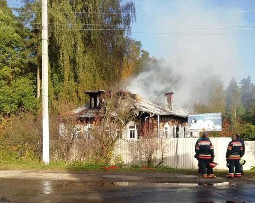 В Тверской области сгорел приют для бездомных животных