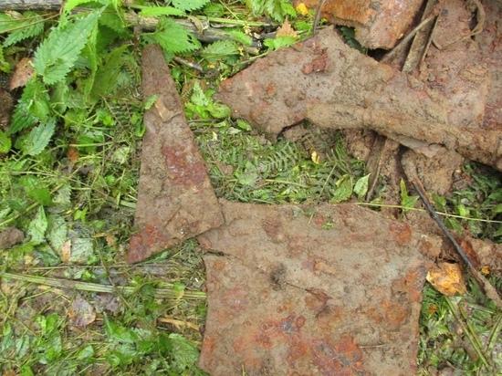Поисковики из Тверской области нашли место падения самолёта времён Великой Отечественной войны