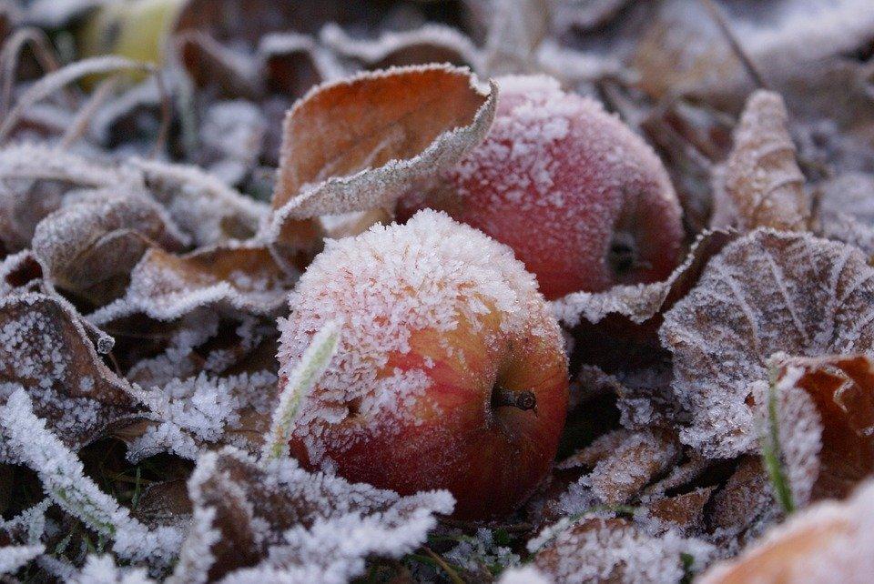 Предстоящие выходные будут морозными в Тверской области