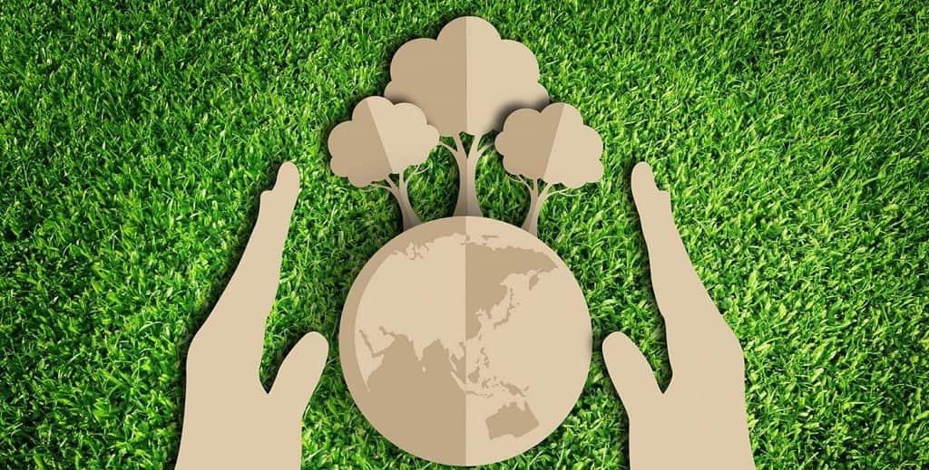 Во всех районах Тверской области напишут Всероссийский экологический диктант
