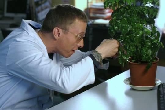 В тверской Горьковке открылась выставка «Здоровье растений в наших руках»