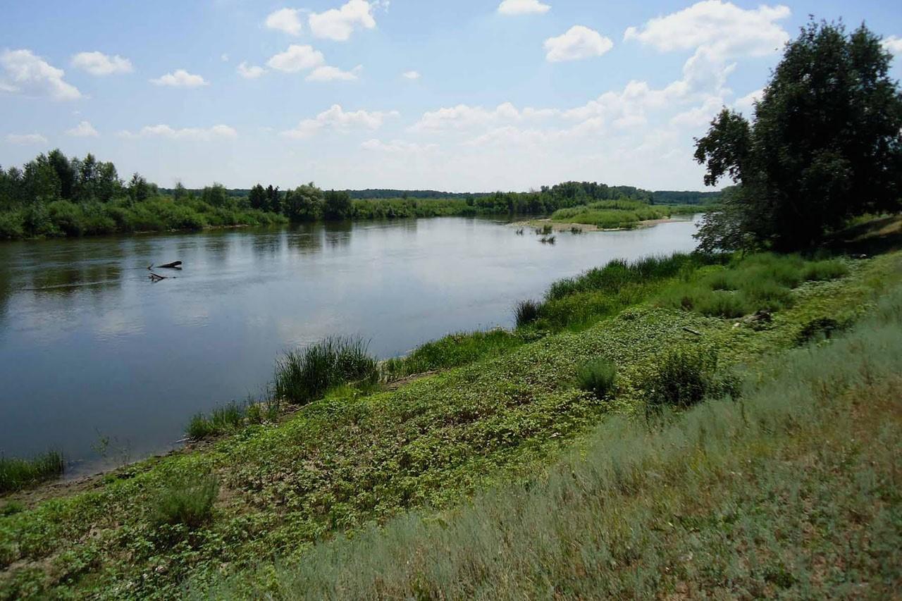 Около 140 километров береговой линии привели в порядок в Тверской области