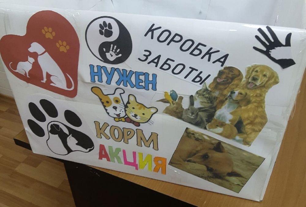 Молодёжь Вышневолоцкого округа запустила марафон добра