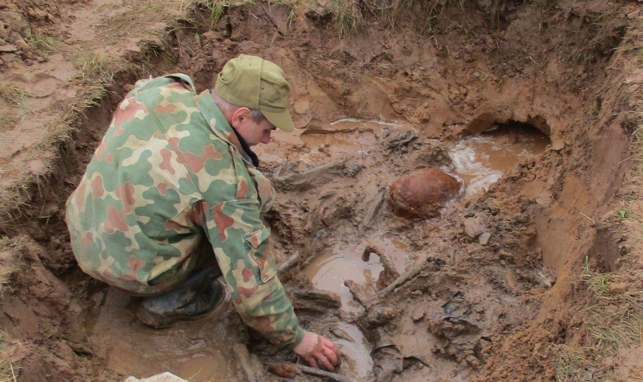 Под Андреаполем обнаружили останки пяти красноармейцев
