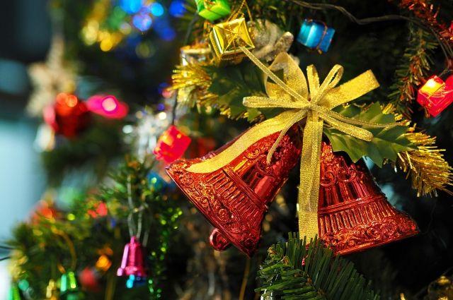 Стало известно, когда Дед Мороз приедет в гости в Тверскую область
