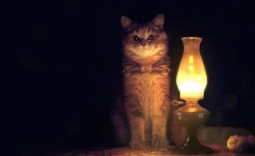Стало известно, где в Твери и Торжке отключат свет на следующей неделе