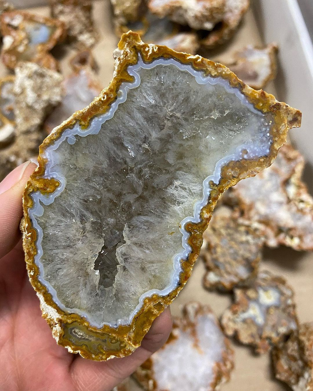 Исследователь нашёл в Тверской области кварц-халцедоновые кристаллы редкой красоты