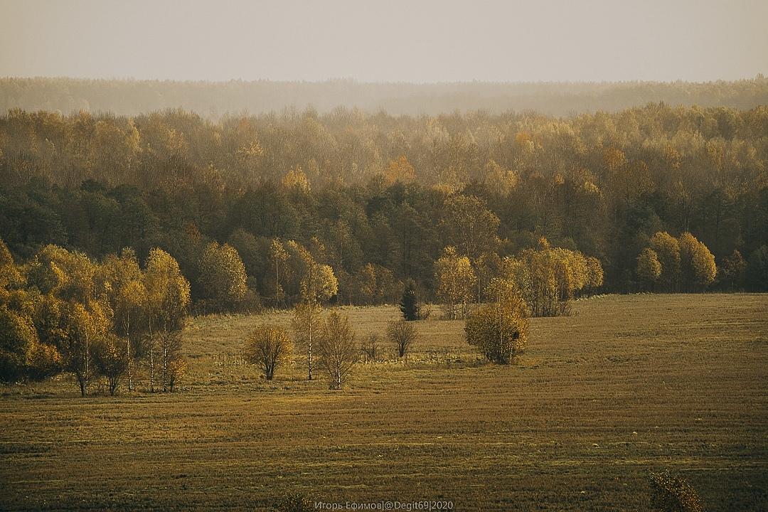 Тверской фотограф поделился кадрами золотой осени в Бежецком районе