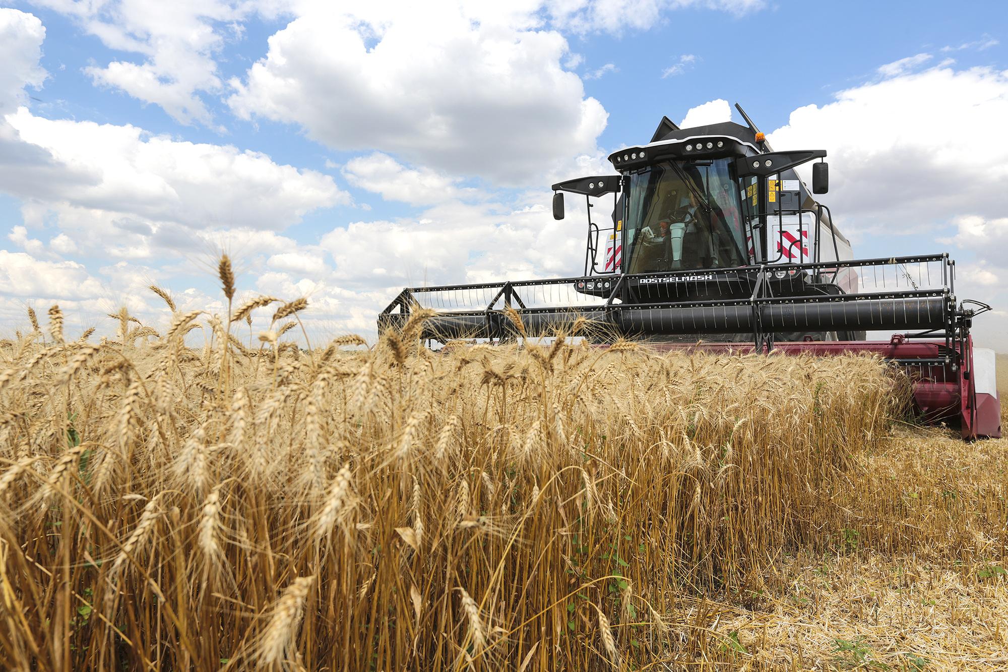 Урожай в Тверской области убрали почти на 100%