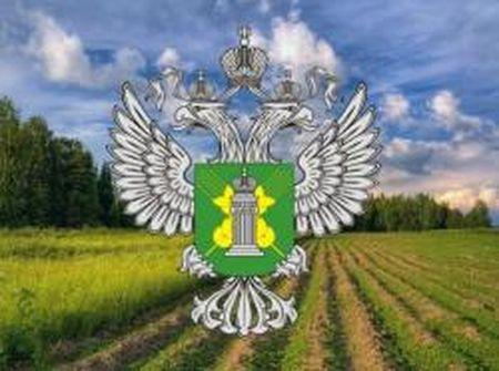 Торжокский землевладелец оштрафован за зарастание сельхозземель