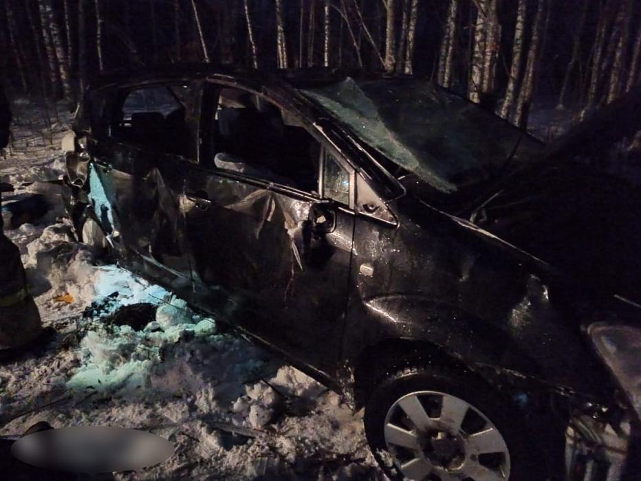 Девочка-подросток погибла в ДТП в Тверской области