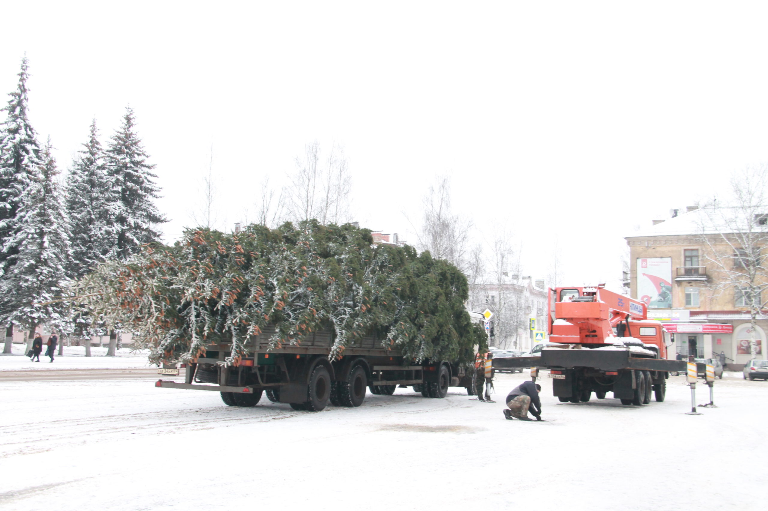 В Нелидово установили главную новогоднюю елку