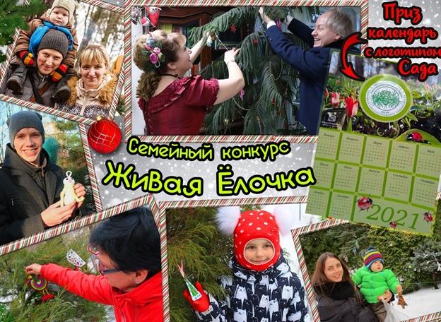 Тверской ботанический сад приглашает принять участие в новогоднем конкурсе