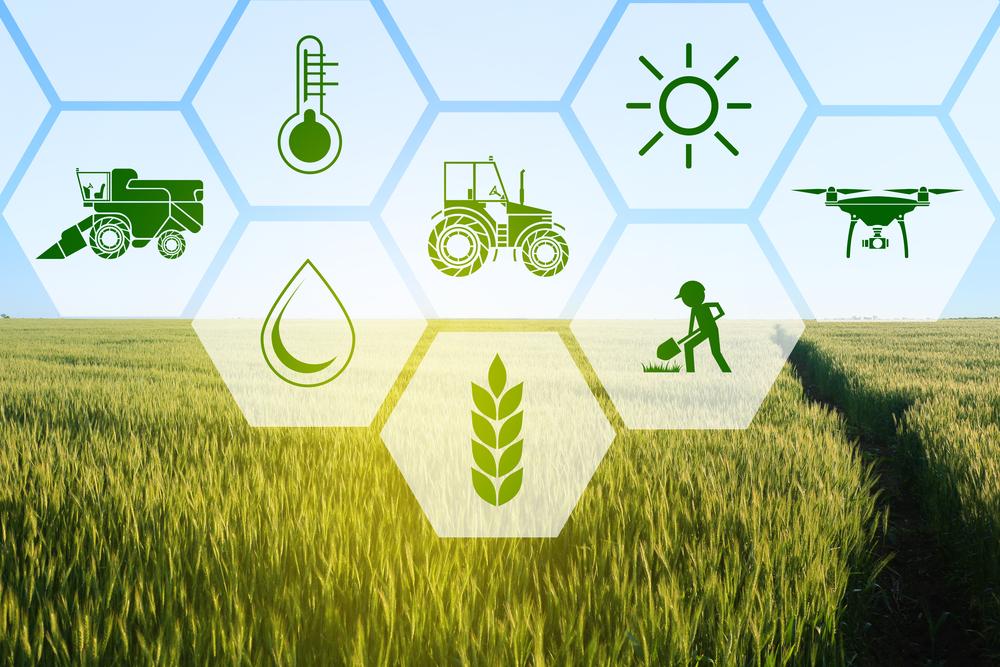 Сельскохозяйственные научные организации Верхневолжья получат грантовую поддержку