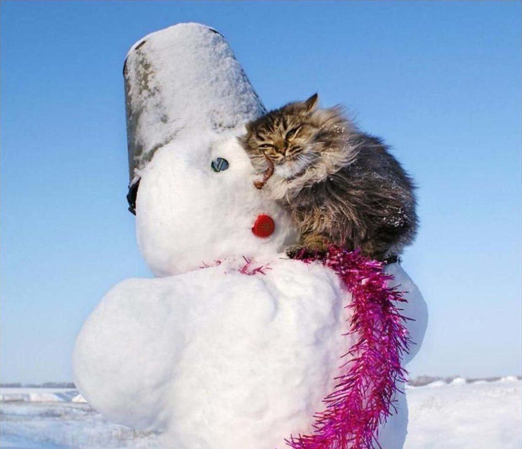 Завтра в Тверской области ожидается последний морозный день