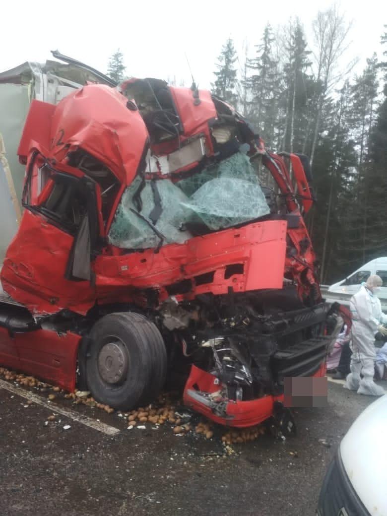 На трассе М-11 в Тверской области одна фура «догнала» другую, есть пострадавший