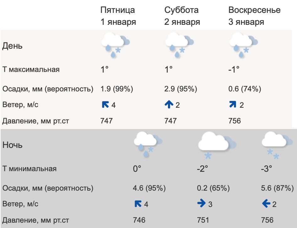 В выходные в Тверской области ожидается серость и слякоть