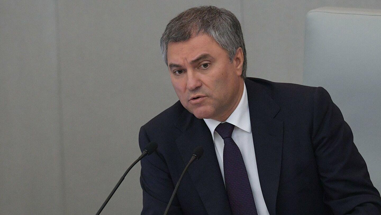 Вячеслав Володин призвал не допустить «беспредела», как в США