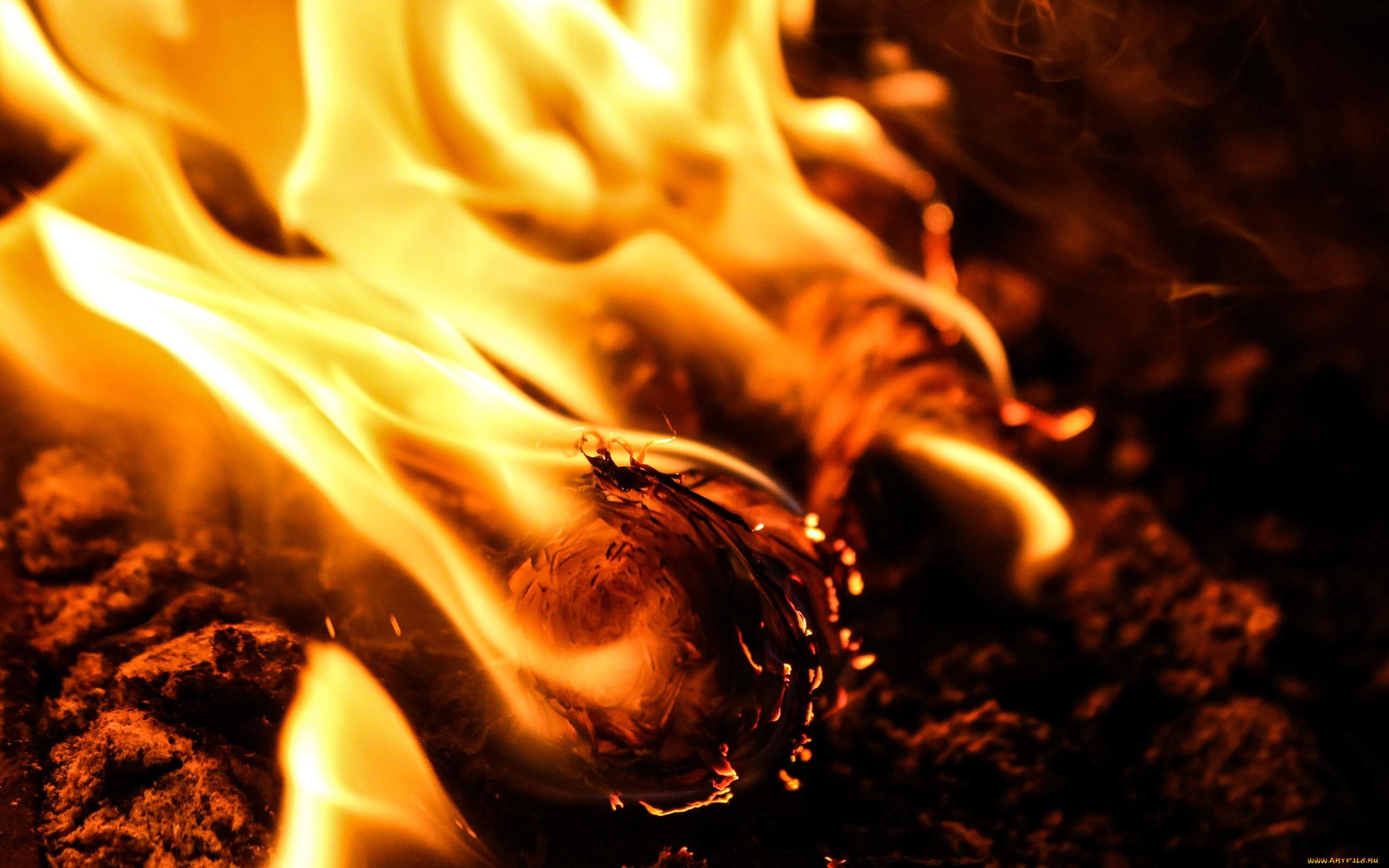 Четыре человека погибли в огне пожара в Твери