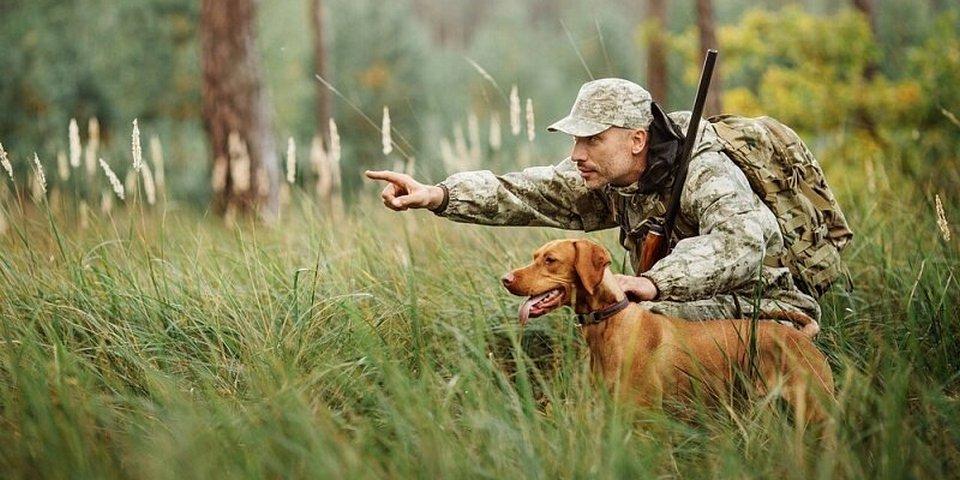 Полиция напомнила о правилах охоты в Тверской области