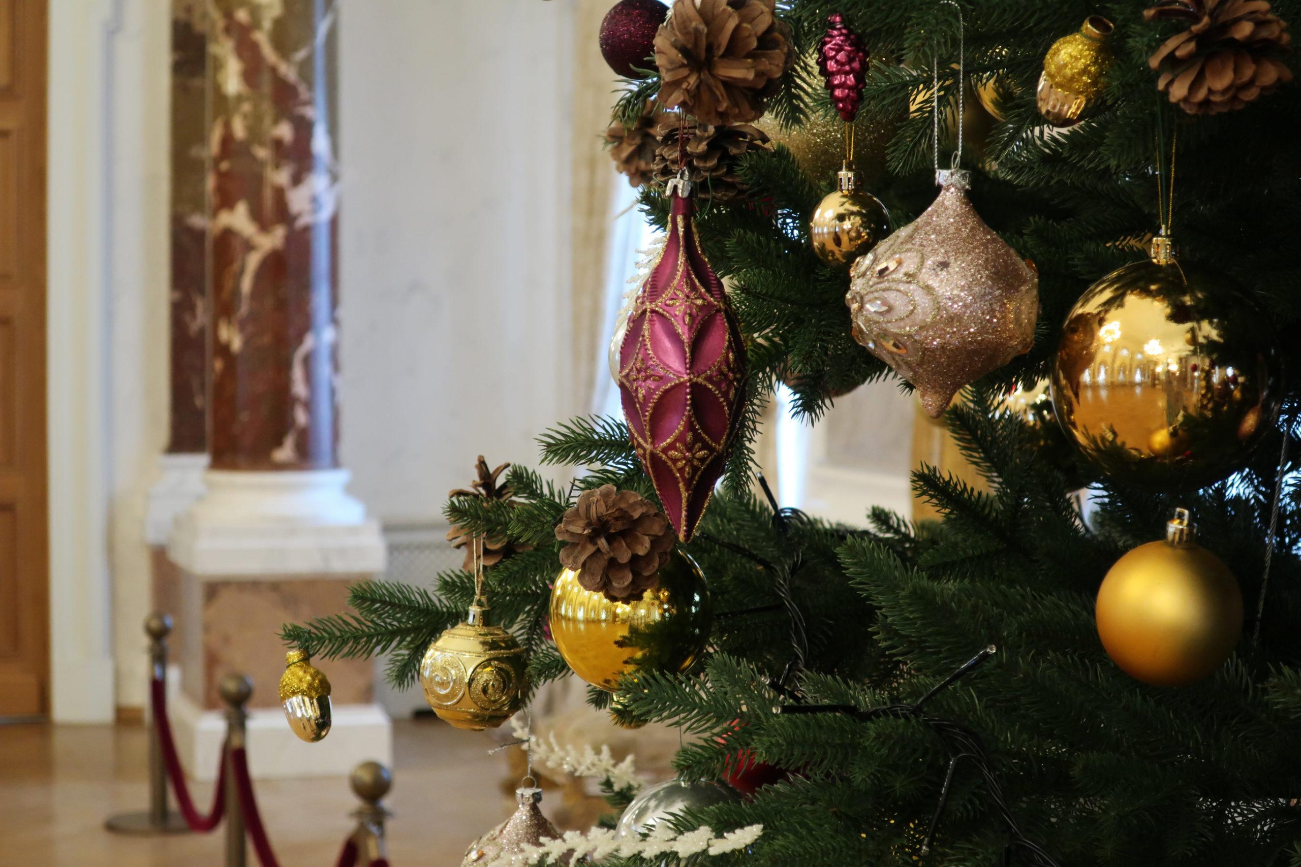 Тверской императорский дворец открыт для посетителей
