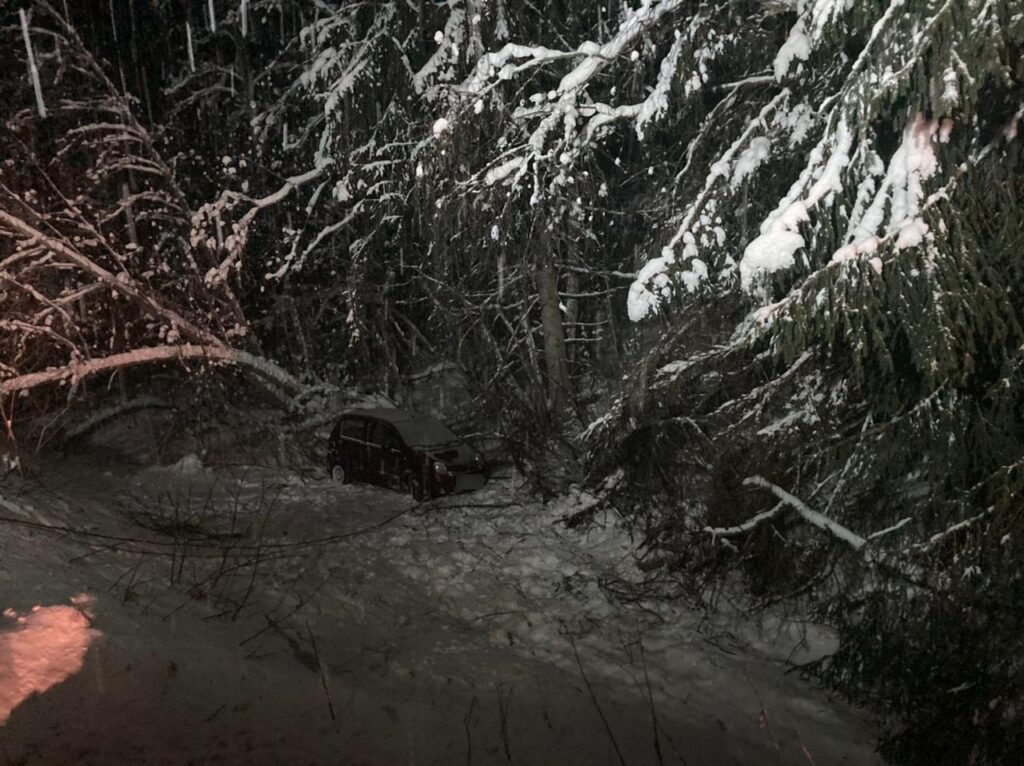 На трассе М-9 в Тверской области автоледи улетела в кювет и покалечила пассажирку