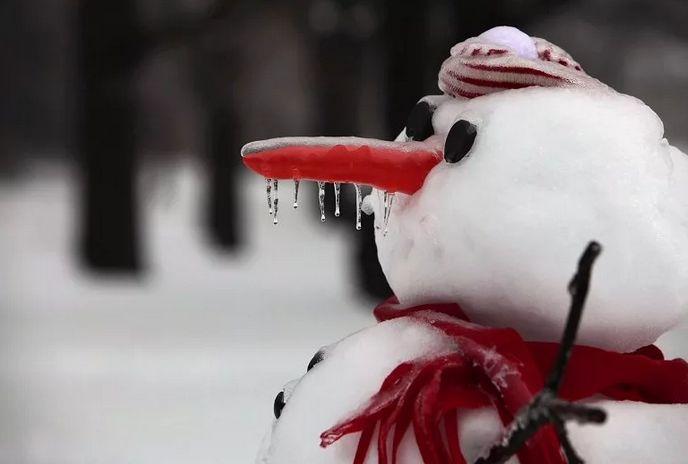 Жителей Тверской области ждет теплое и туманное воскресенье