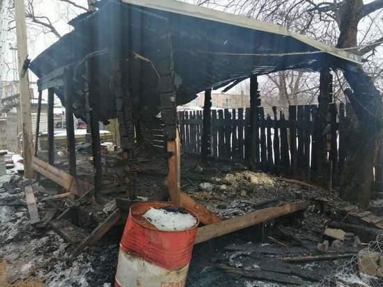 В Тверкой области из-за неисправного обогревателя сгорел курятник