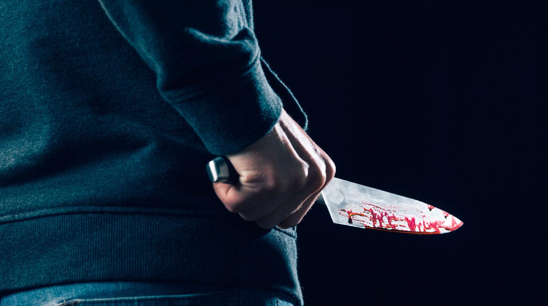 Мужчину, заколовшего знакомого на пилораме в Тверской области, взяли под стражу