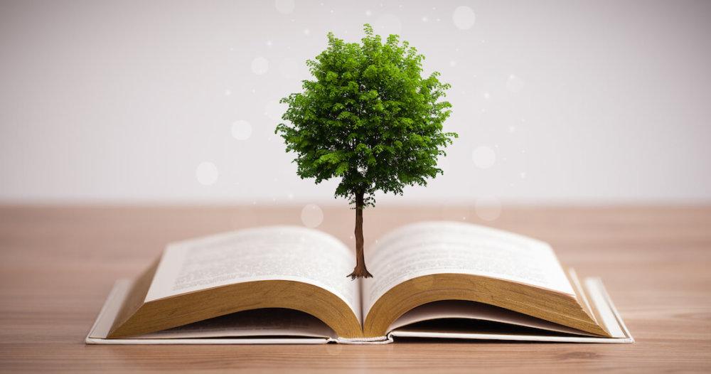 В Тверской области пройдут мероприятия по экологическому просвещению