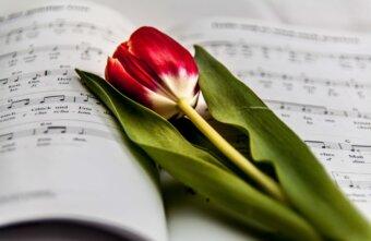 В Тверском музейно-выставочном центре встретят весну праздничным концертом