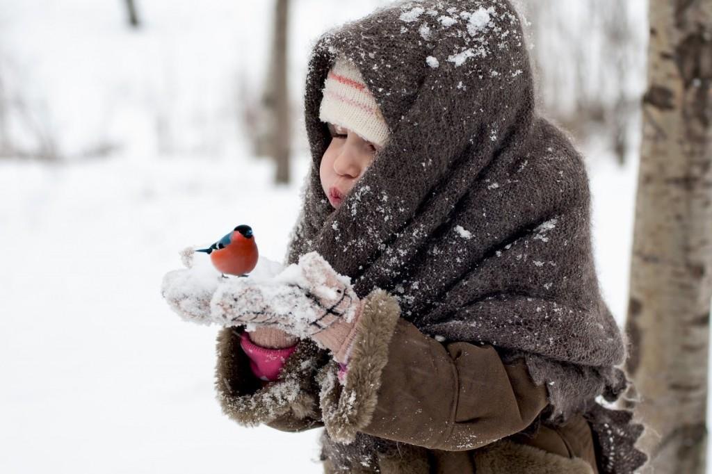 Морозы в Тверской области не хотят отступать