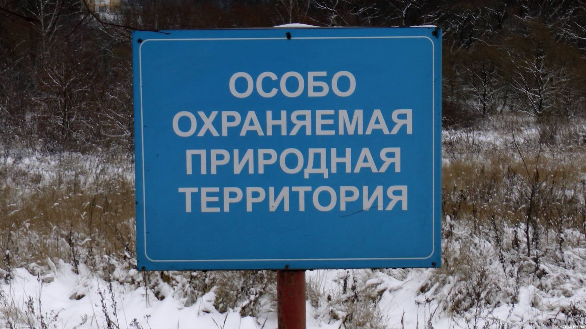 В Тверской области утверждены границы еще 12 особо охраняемых природных территорий регионального значения