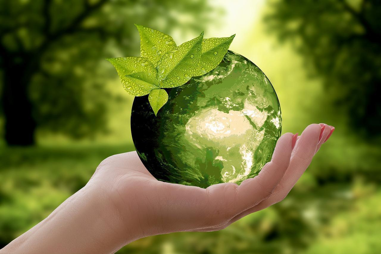 В Тверской области пройдет экологический квест Ноль отходов