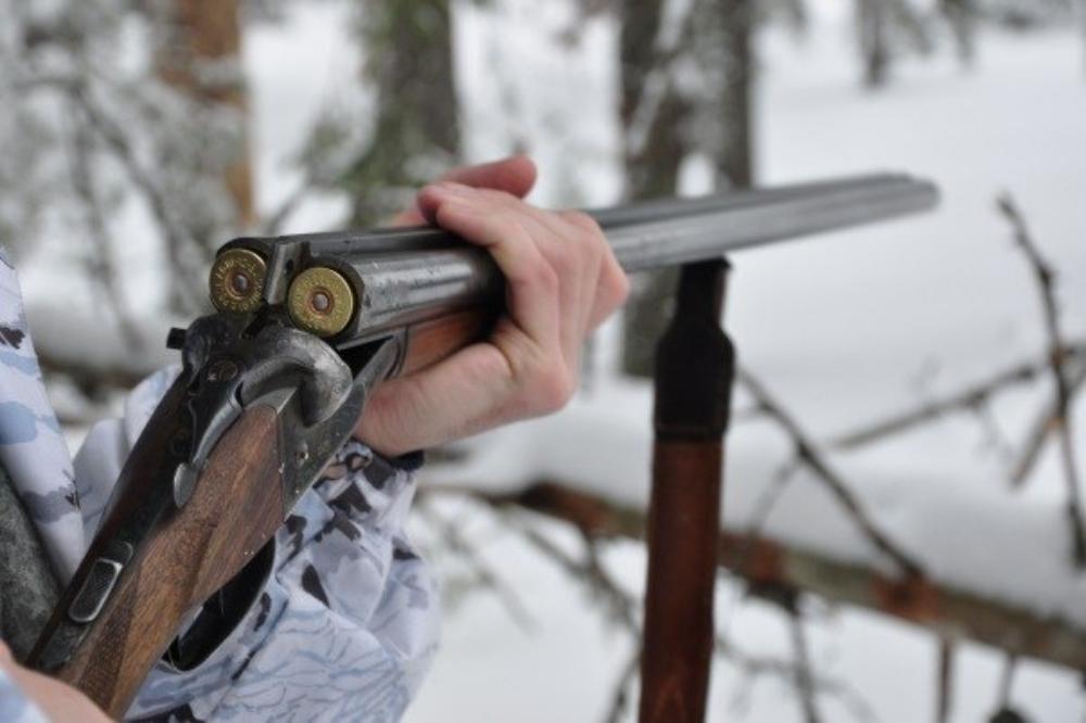 Житель Москвы заплатит за незаконную охоту на лося в Тверской области
