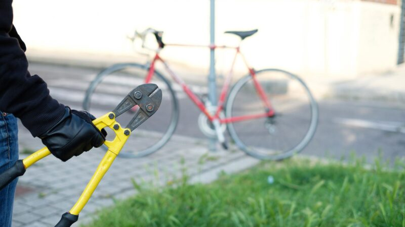 Украденный велосипед вернули владелице
