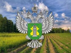 Юридическое лицо привлечено к ответственности за загрязнение и зарастание сельскохозяйственных угодий